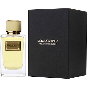 Dolce & Gabbana Velvet Mimosa Bloom Eau De Parfum Spray 5 oz